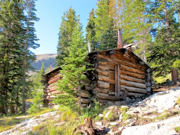 Cabin turned emergency shelter